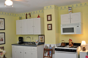 Kitchen area with burners and microwave